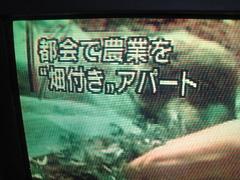 IMG_tv.JPG