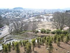 IMG_nishiyama0398.JPG