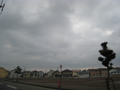 IMG_t_simonoda.JPG
