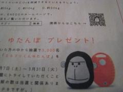 IMG_enegori2.JPG