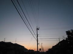 IMG_harue2.JPG