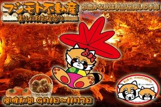 Panda_Akibeya2012.jpg