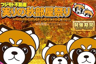 Panda_Akibeya2016_640.jpg