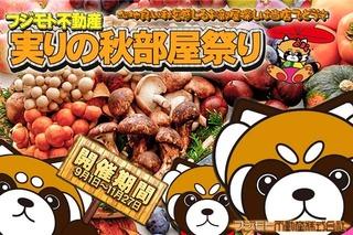 Panda_Akibeya2017.jpg