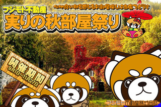 Panda_Akibeya2018.jpg
